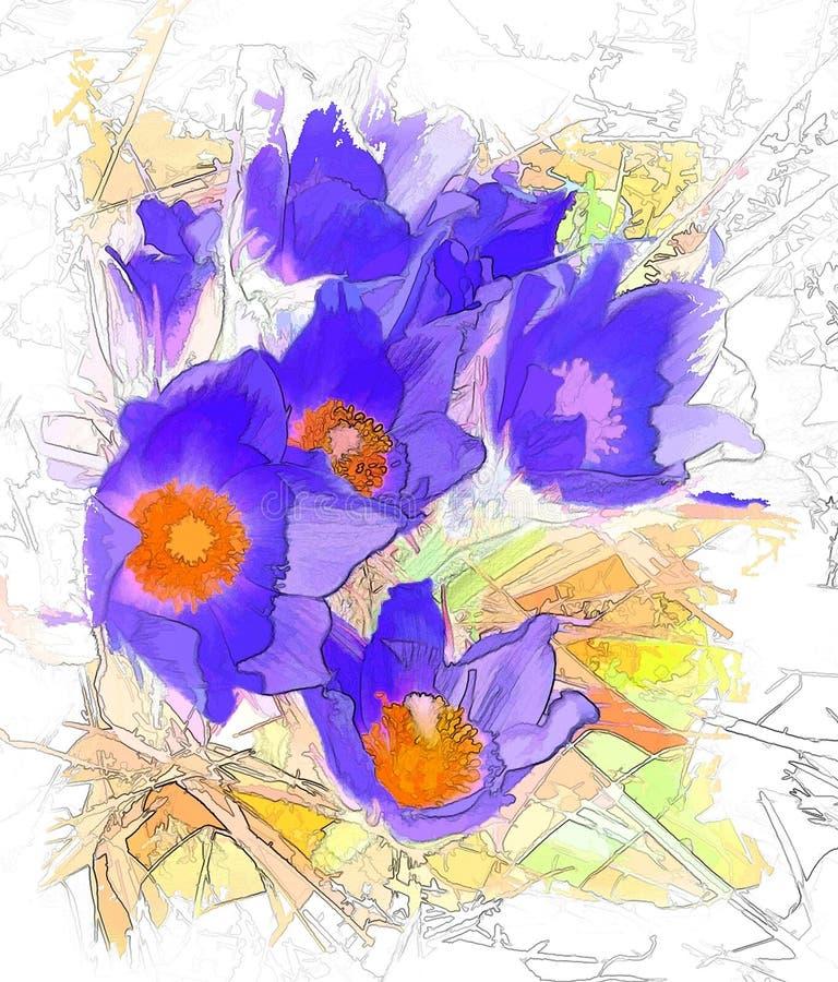 Flores de um lumbago imagem de stock royalty free
