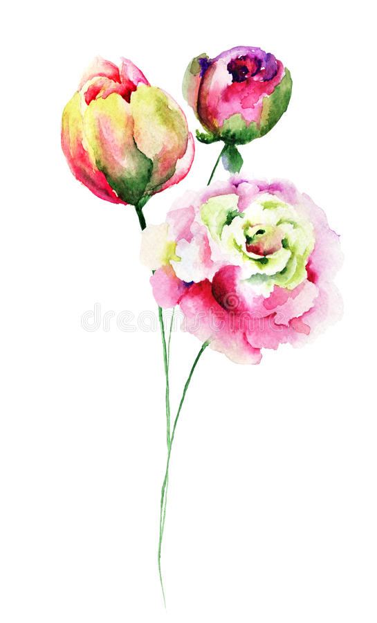 Flores decorativas del verano libre illustration