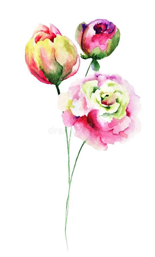 Flores decorativas do verão ilustração royalty free