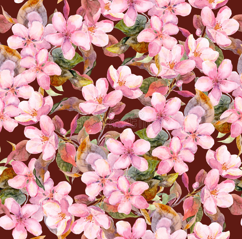 Flores del árbol frutal (manzana o cereza) Modelo floral inconsútil Dibujo de la acuarela en fondo marrón ilustración del vector
