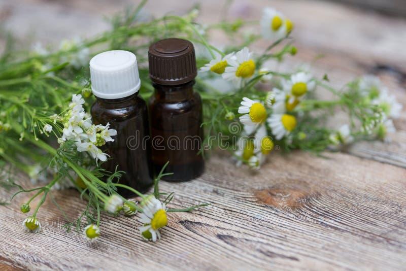 Flores del aceite esencial y de la manzanilla fotografía de archivo libre de regalías