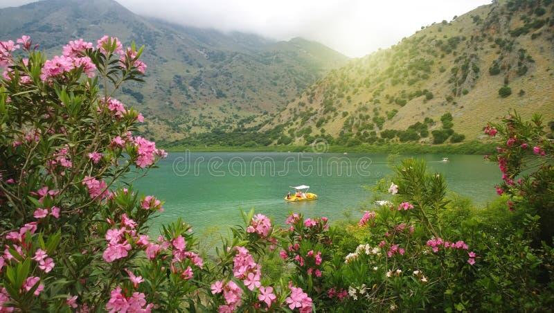 Flores del adelfa y la vista del lago Kournas en un día de primavera nublado en la isla de Creta Catamarán en el lago imagen de archivo