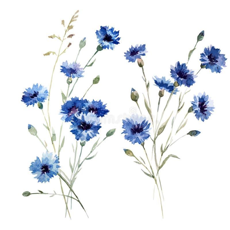 Flores 8 del azul libre illustration