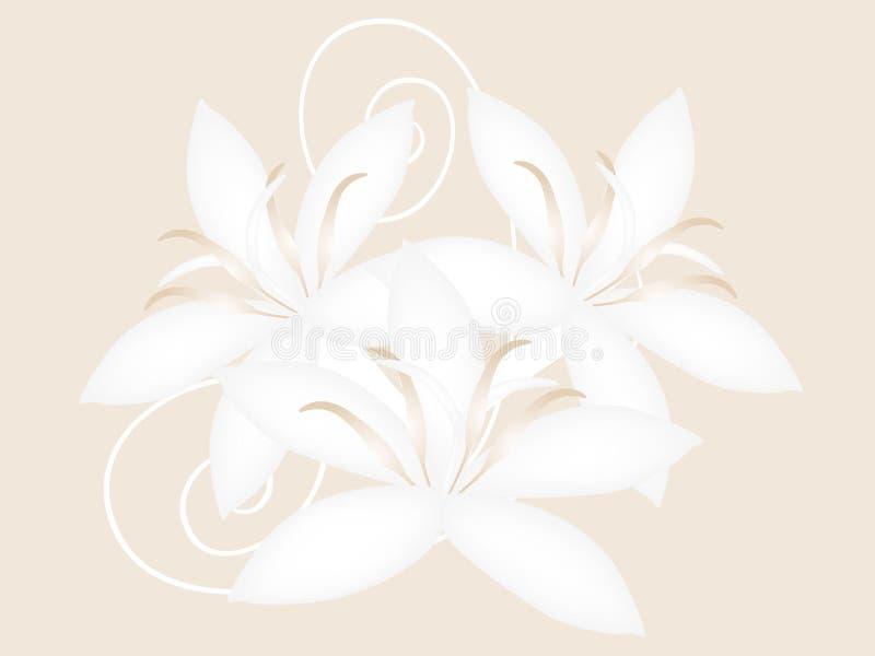 Flores del café aisladas en un fondo beige, diseño stock de ilustración