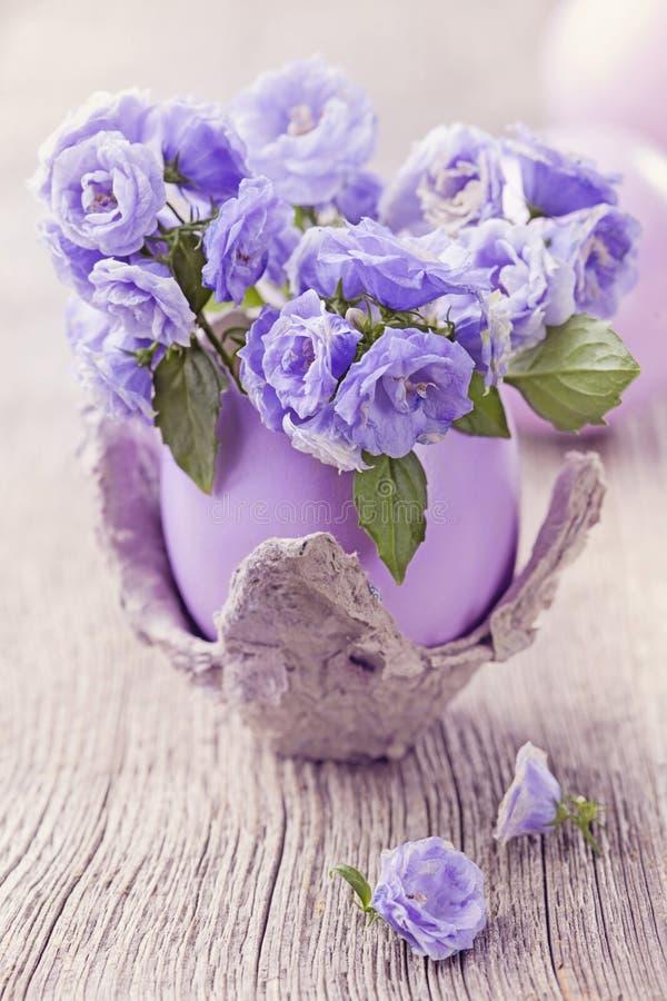 Flores del Campanula fotos de archivo