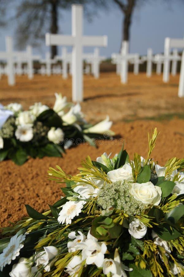 Flores del cementerio imagenes de archivo