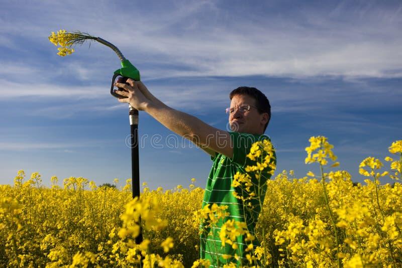 Flores del combustible imagenes de archivo