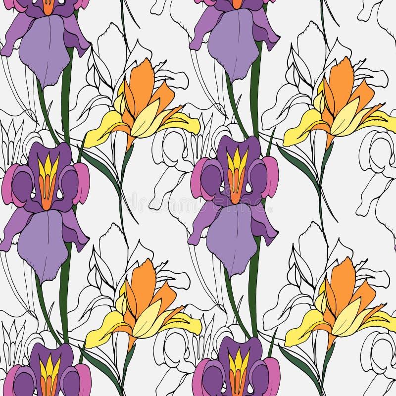 Flores del diafragma libre illustration