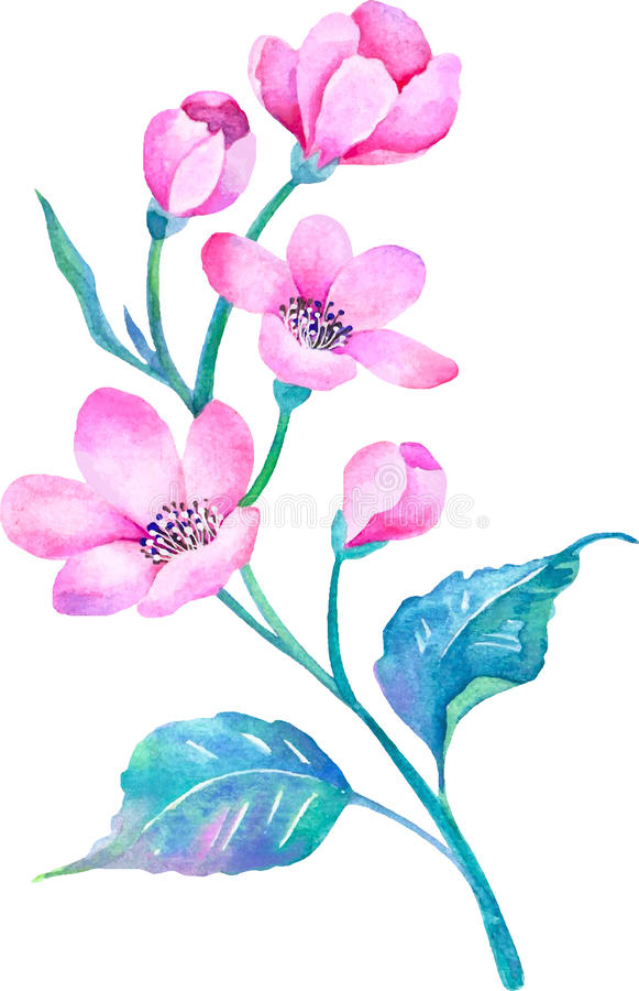 Flores del ejemplo de la acuarela en fondo simple stock de ilustración