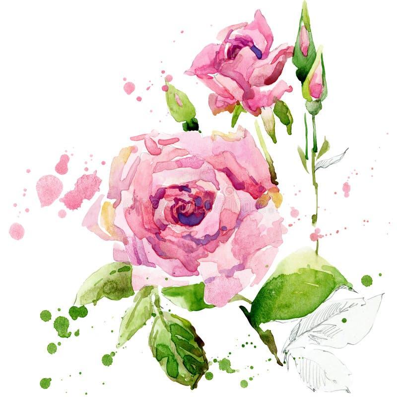 Flores del jardín del verano Ilustración de la acuarela libre illustration