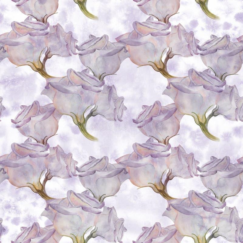 Flores del jardín Eustoma - flores watercolor Composición decorativa en fondo de la acuarela Gráfico inconsútil del fondo stock de ilustración