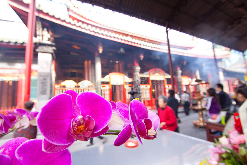 Flores del patio del templo imágenes de archivo libres de regalías