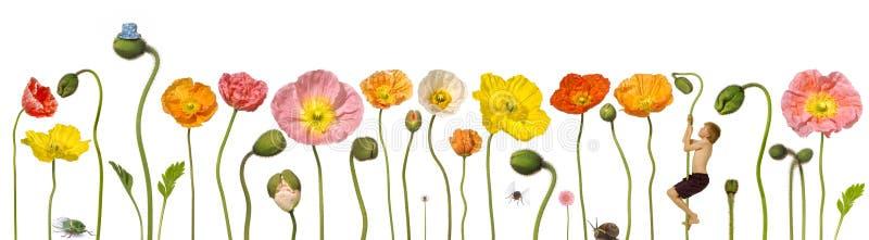 Flores del resorte con el niño libre illustration