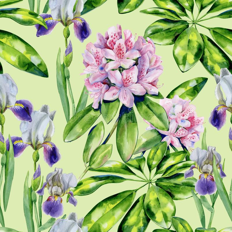Flores del rododendro y modelo tropicales del iris fotos de archivo libres de regalías