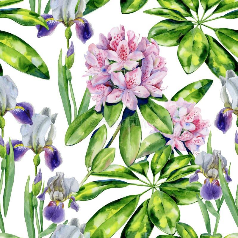 Flores del rododendro y modelo tropicales del iris foto de archivo libre de regalías