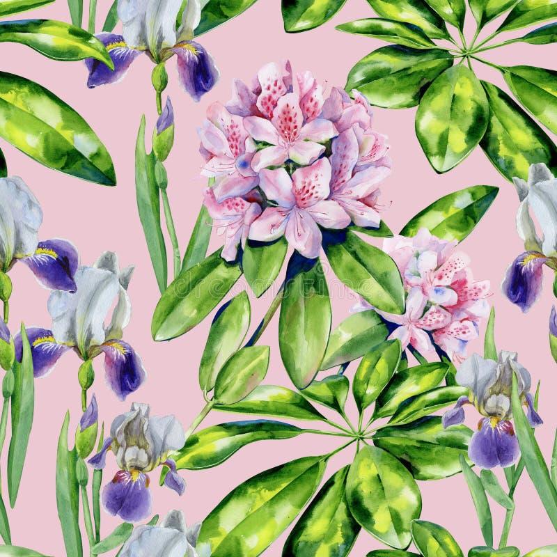 Flores del rododendro y modelo tropicales del iris imagen de archivo libre de regalías