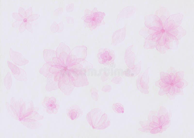Flores del rosa de la acuarela en el fondo blanco stock de ilustración