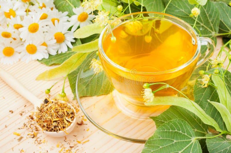 Flores del tilo y de la manzanilla y taza de té sano foto de archivo