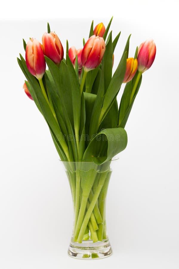 Flores del tulipán en el florero de cristal imagen de archivo