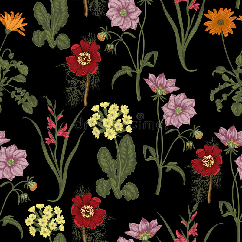 Flores del verano del campo Fondo inconsútil botánica Paño, papel pintado floración Textura con el modelo floral libre illustration