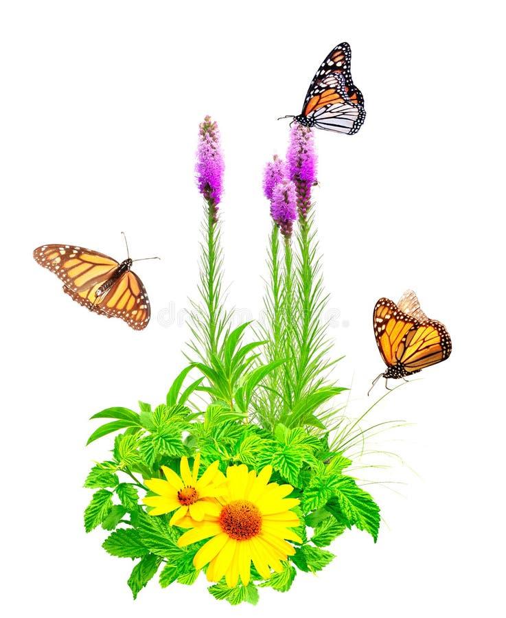 Flores del verano, hojas verdes y mariposas de monarca foto de archivo libre de regalías