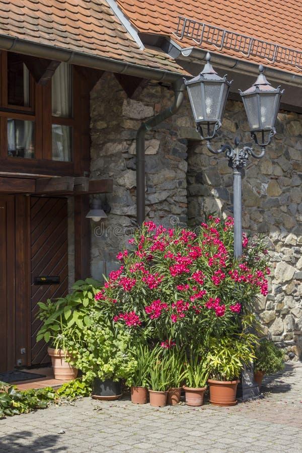 Download Flores Delante Del Edificio Histórico Foto de archivo - Imagen de medio, macro: 41906376