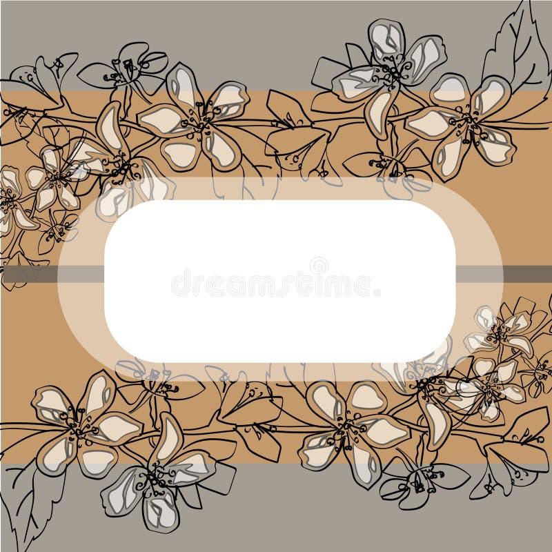 Flores delicadas brancas do jasmim bonito imagem de stock