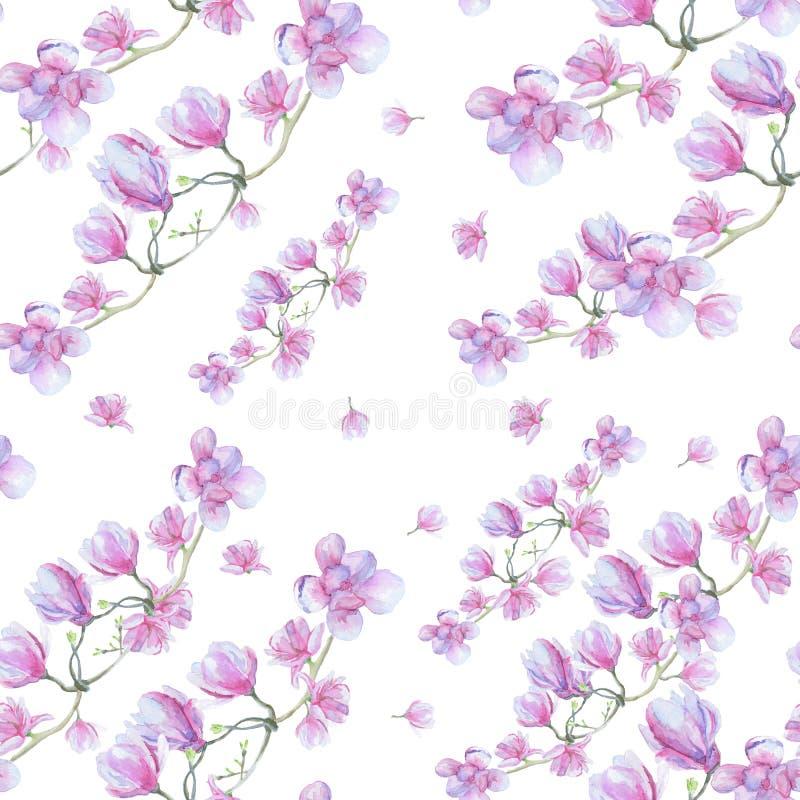 Flores delicadas de la magnolia en una rama ilustración del vector