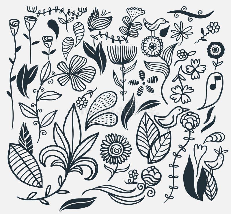 Flores desenhadas mão ilustração do vetor