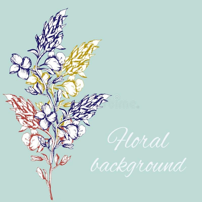 Flores desenhadas m?o Flores do contorno da mola para a decora??o das festividades no papel, cart?o, congratula??o Ilustra??o do  ilustração royalty free