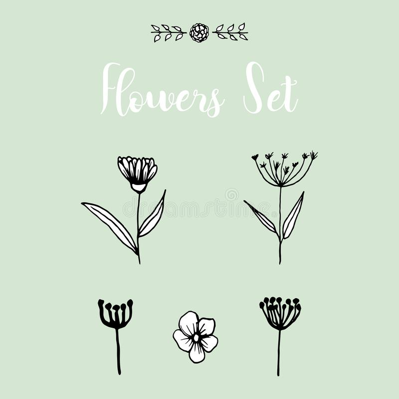 Flores dibujadas mano fijadas libre illustration