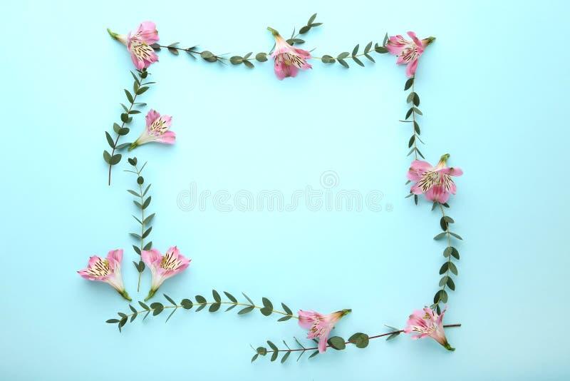Flores do Alstroemeria e folhas verdes imagem de stock royalty free