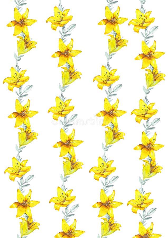 Flores do amarelo do lírio do esboço fotografia de stock royalty free