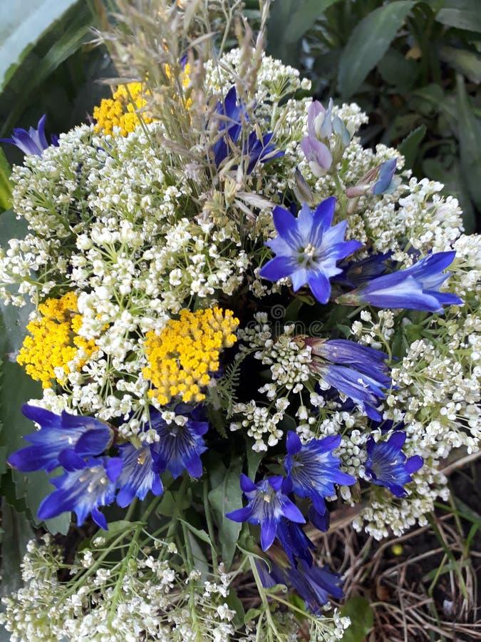 flores do bouguet fotografia de stock royalty free