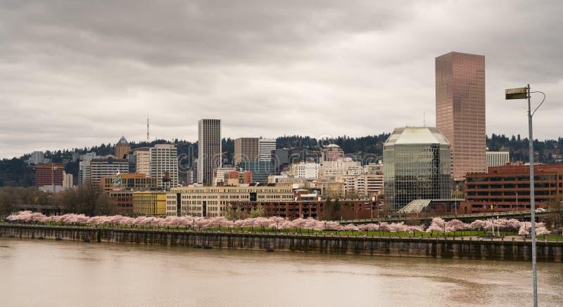 Flores do centro da mola do rio de Portland Oregon Willamette da skyline da cidade fotos de stock