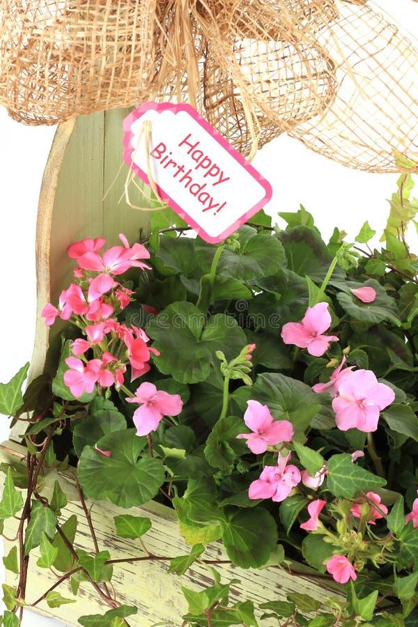 Flores do feliz aniversario imagens de stock royalty free