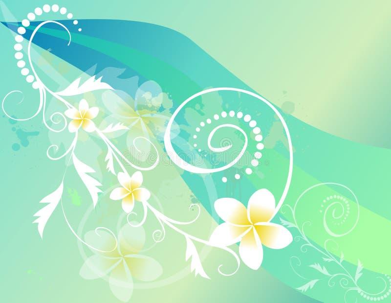 Flores do Frangipani ilustração royalty free