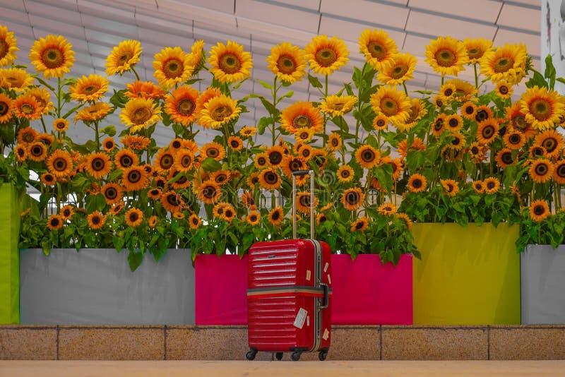 Flores do girassol e mala de viagem vermelha imagem de stock royalty free