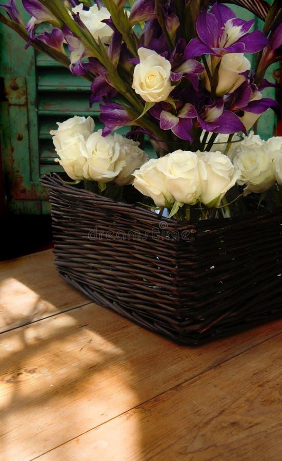 Flores do indicador foto de stock royalty free