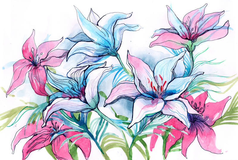Flores do lírio ilustração royalty free