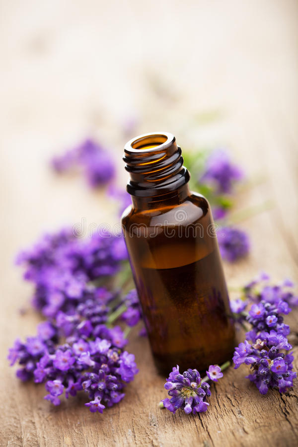Flores do petróleo essencial e da alfazema foto de stock