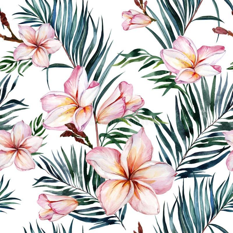 Flores do Plumeria e folhas de palmeira exóticas no teste padrão tropical sem emenda Fundo branco Pintura da aguarela ilustração stock