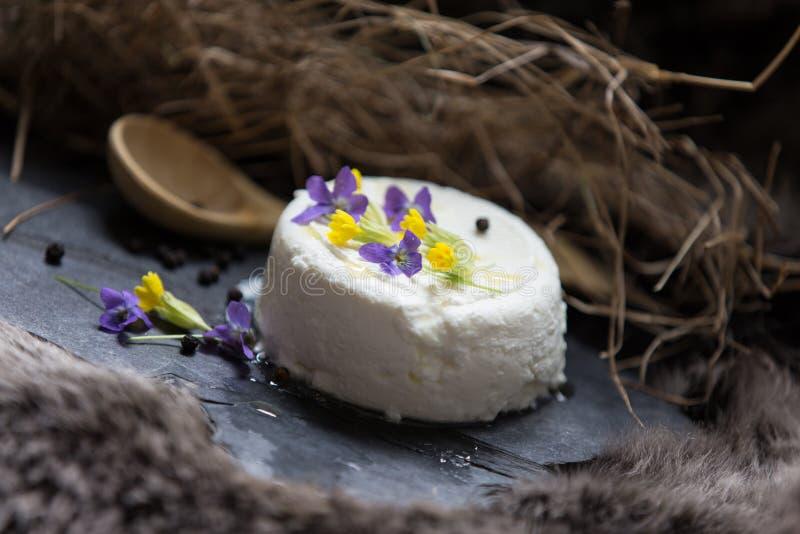 Flores do queijo e da mola de cabra fotos de stock royalty free