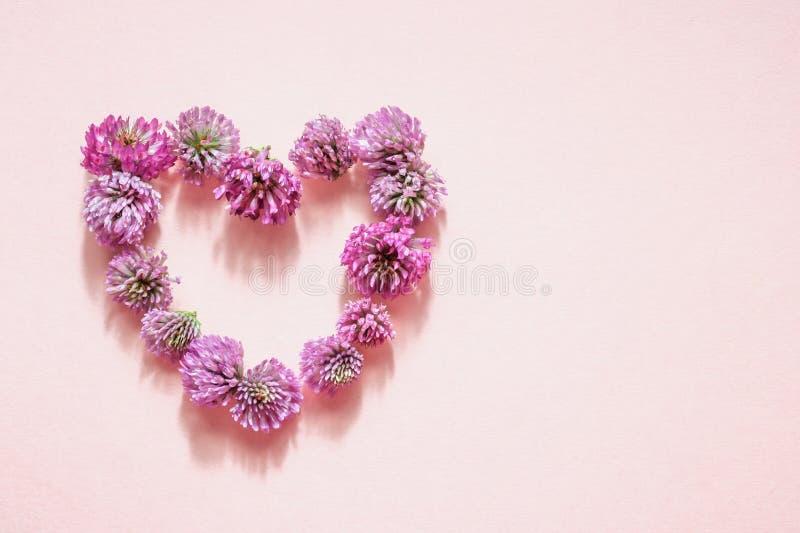 Flores do trevo vermelho na forma de um coração no fundo cor-de-rosa fotografia de stock royalty free