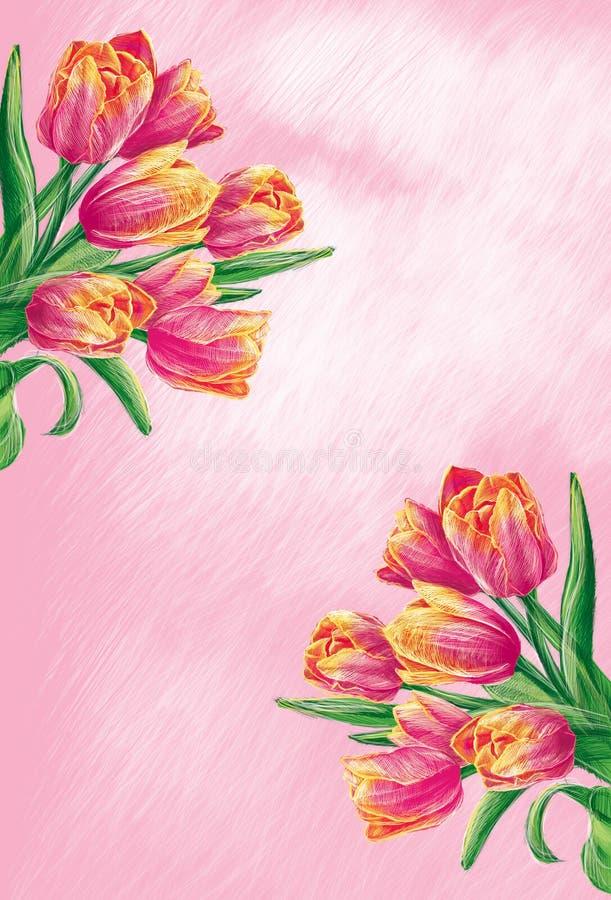 Flores do Tulip ilustração do vetor