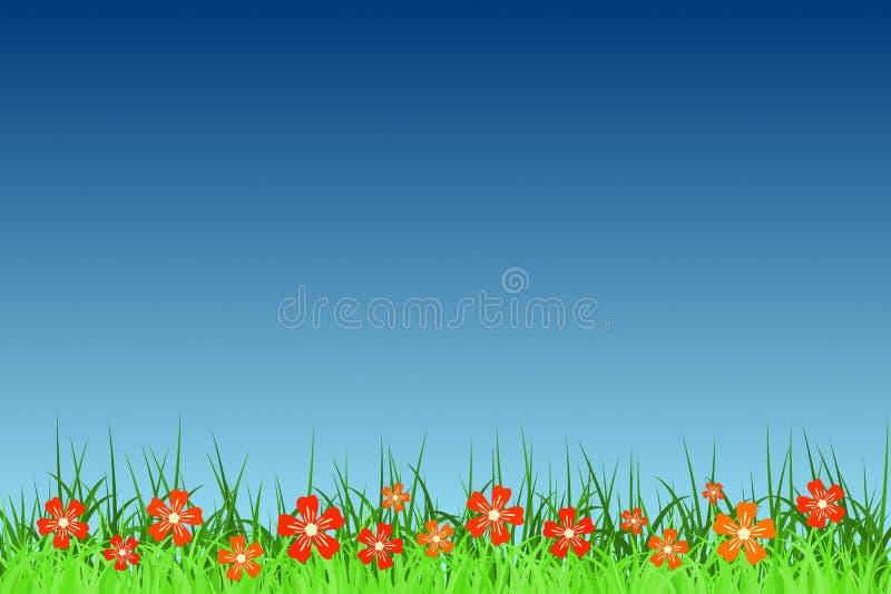 Flores do verão ilustração royalty free