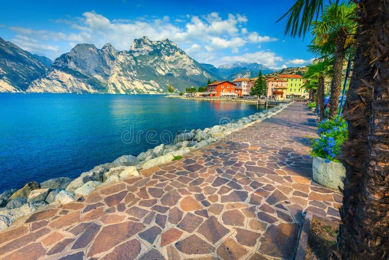 Flores do verão e passeio impressionante, lago Garda, Torbole, Itália, Europa fotografia de stock royalty free