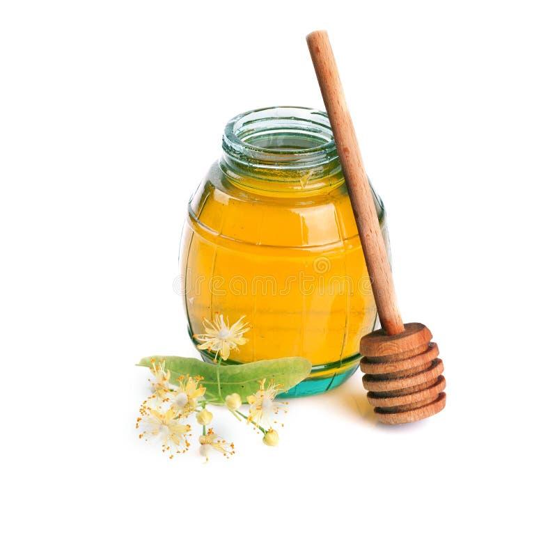 Flores doces do mel e do Linden imagens de stock