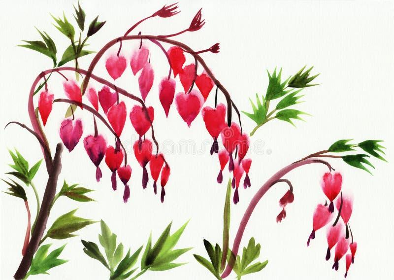 Flores dos corações de sangramento ilustração do vetor