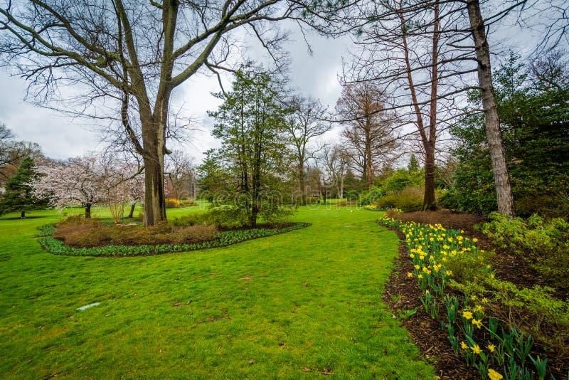 Flores e árvores em Sherwood Gardens Park em Guilford, Baltimore, Maryland fotografia de stock royalty free